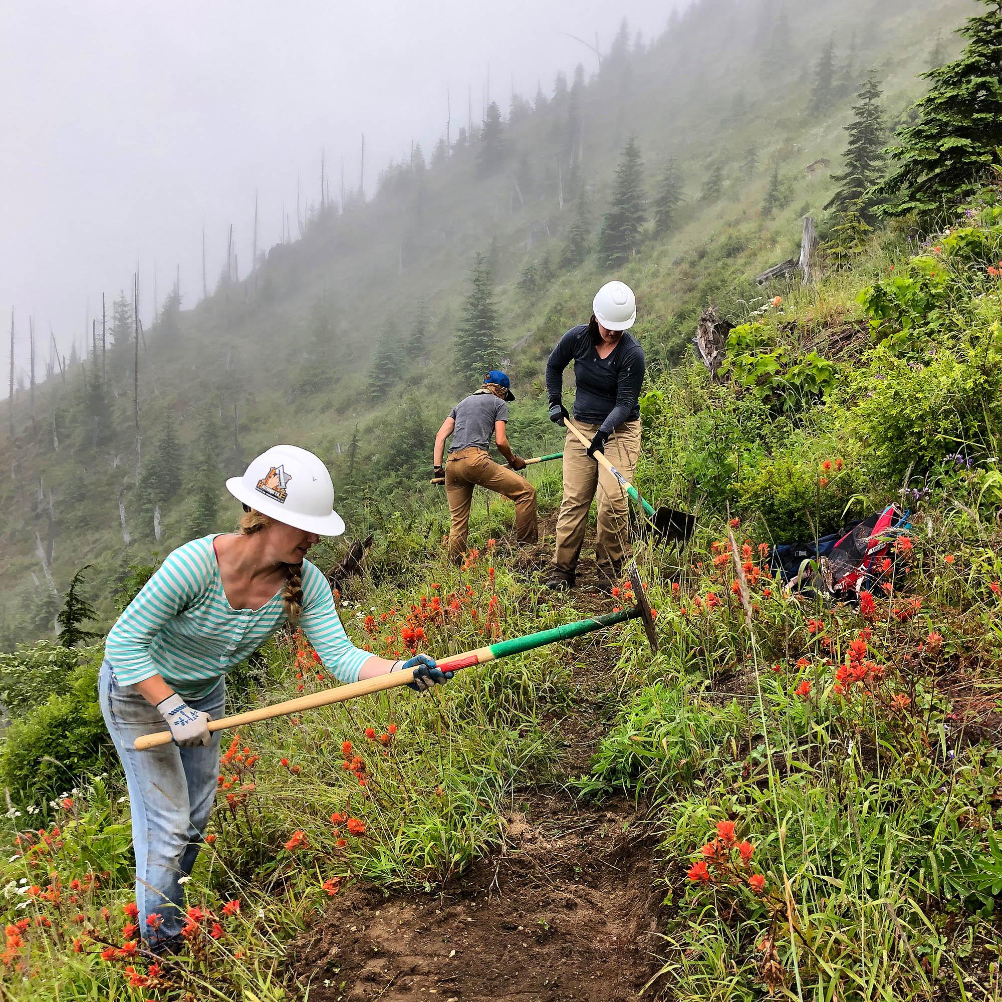 Racing to Digging